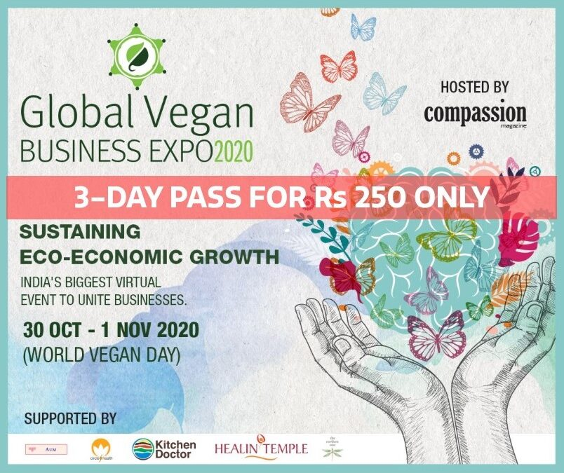 10 REASON WHY YOU SHOULD ATTEND THE GLOBAL BUSINESS VEGAN EXPO 2020!